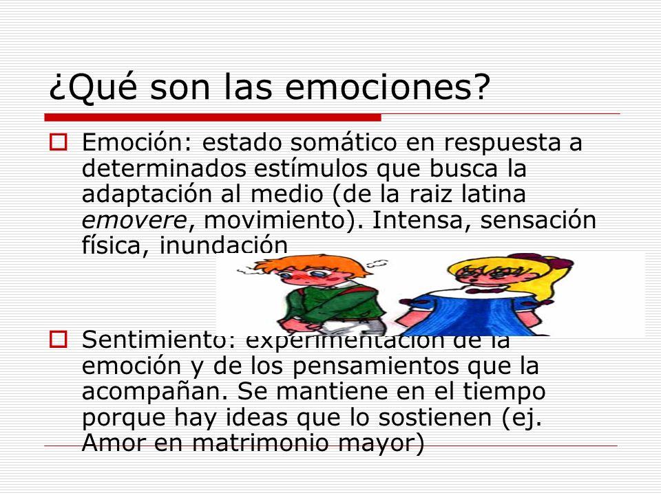 ¿Qué son las emociones