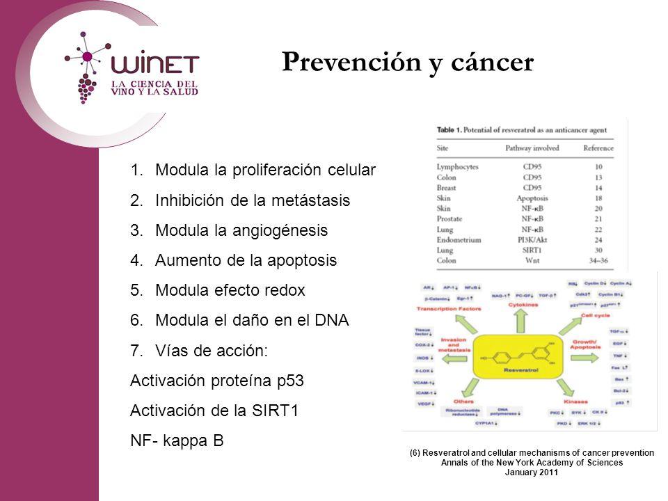 Prevención y cáncer Modula la proliferación celular