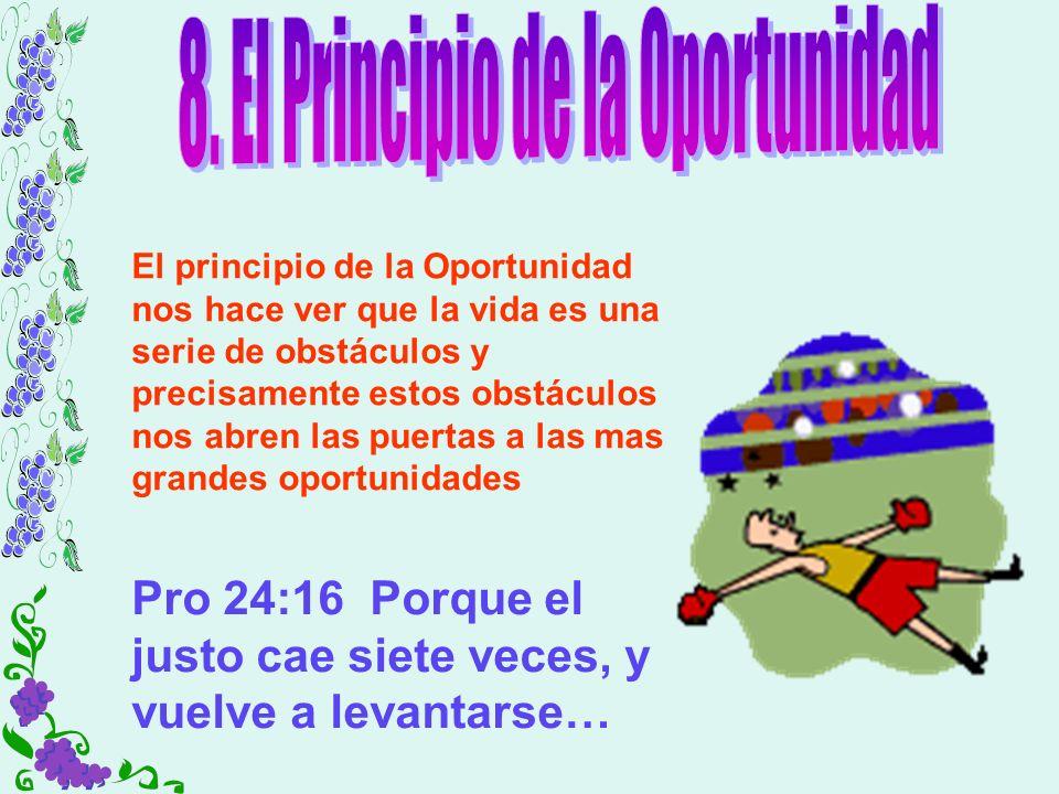 8. El Principio de la Oportunidad