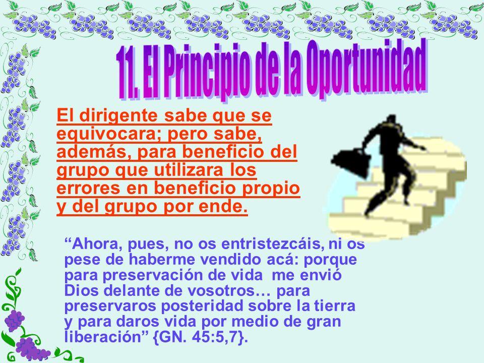 11. El Principio de la Oportunidad