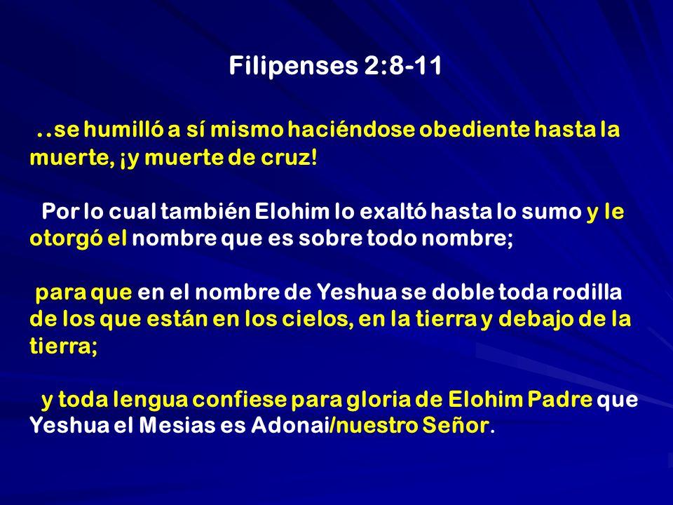 Filipenses 2:8-11 ..se humilló a sí mismo haciéndose obediente hasta la muerte, ¡y muerte de cruz!