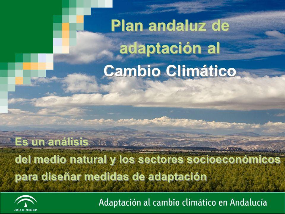 Plan andaluz de adaptación al Cambio Climático