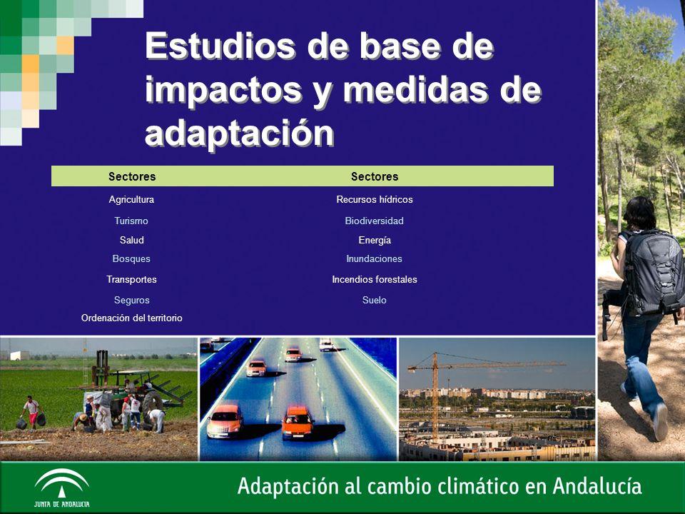 Estudios de base de impactos y medidas de adaptación