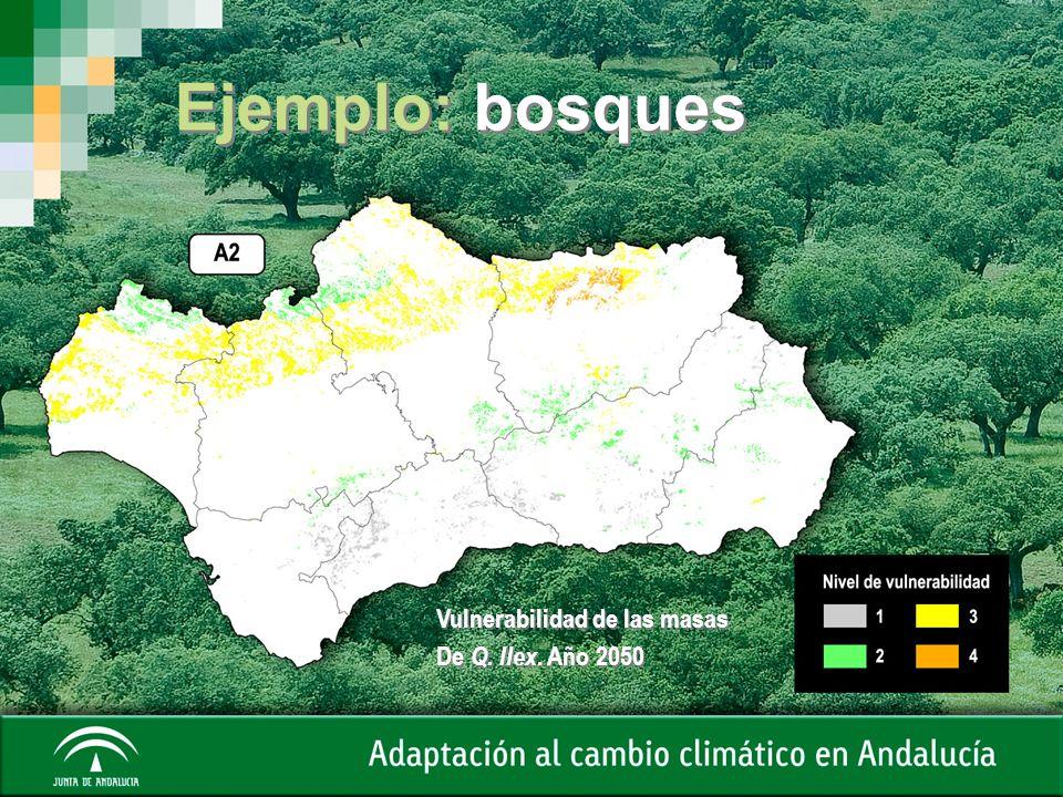 Ejemplo: bosques Vulnerabilidad de las masas De Q. Ilex. Año 2050