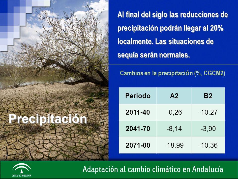 Cambios en la precipitación (%, CGCM2)
