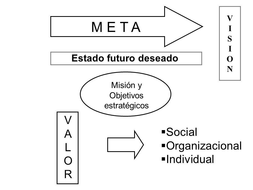 M E T A V A Social L Organizacional O Individual R