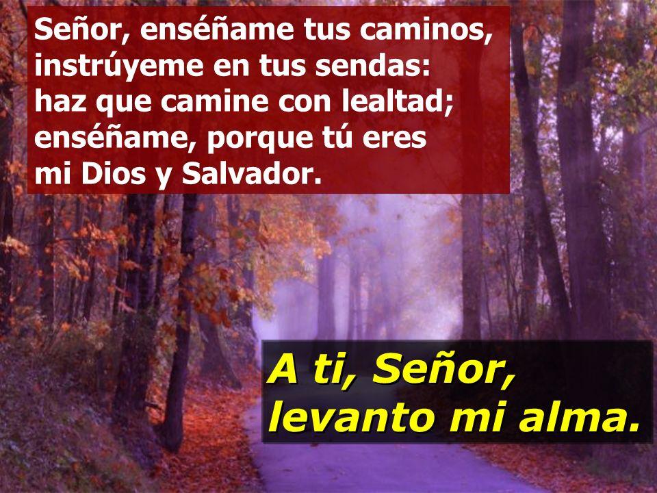 A ti, Señor, levanto mi alma.