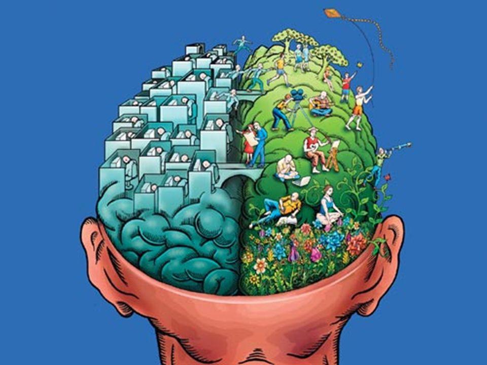 Dominancia Cerebral Disminución en la visión Problemas de lenguaje
