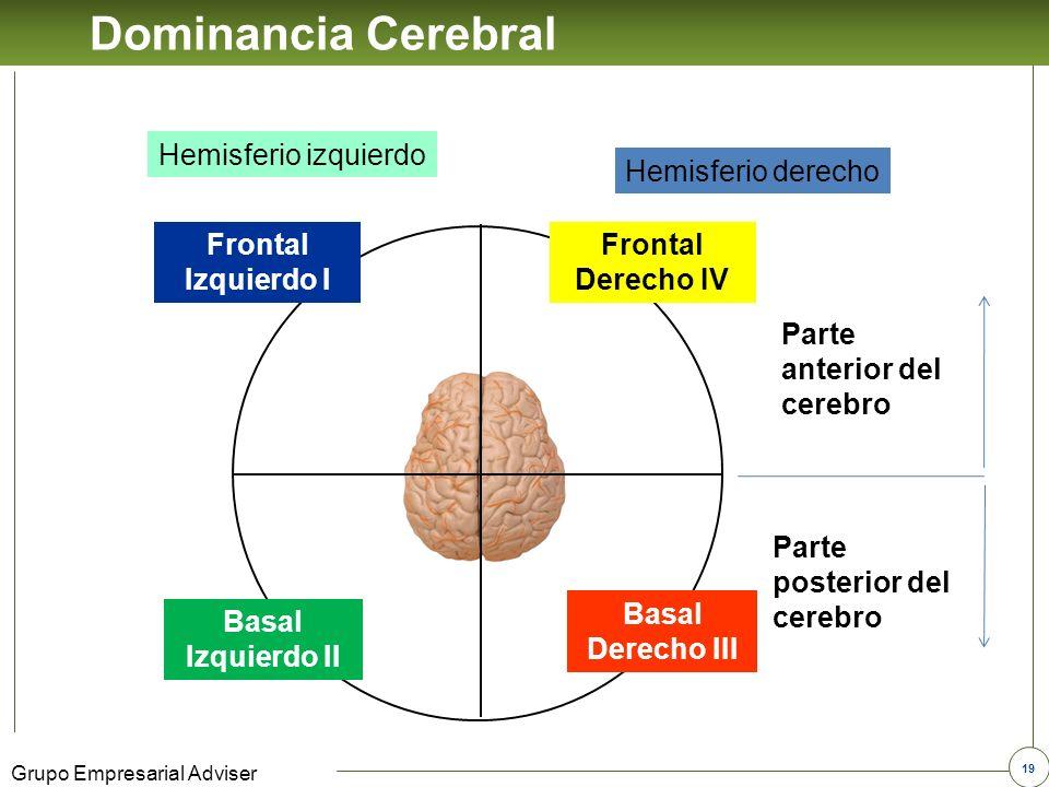 Dominancia Cerebral Hemisferio izquierdo Hemisferio derecho
