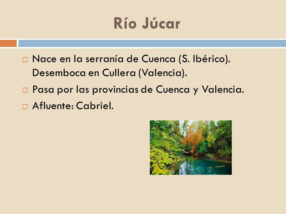Río Júcar Nace en la serranía de Cuenca (S. Ibérico). Desemboca en Cullera (Valencia). Pasa por las provincias de Cuenca y Valencia.