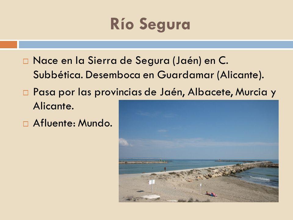 Río SeguraNace en la Sierra de Segura (Jaén) en C. Subbética. Desemboca en Guardamar (Alicante).