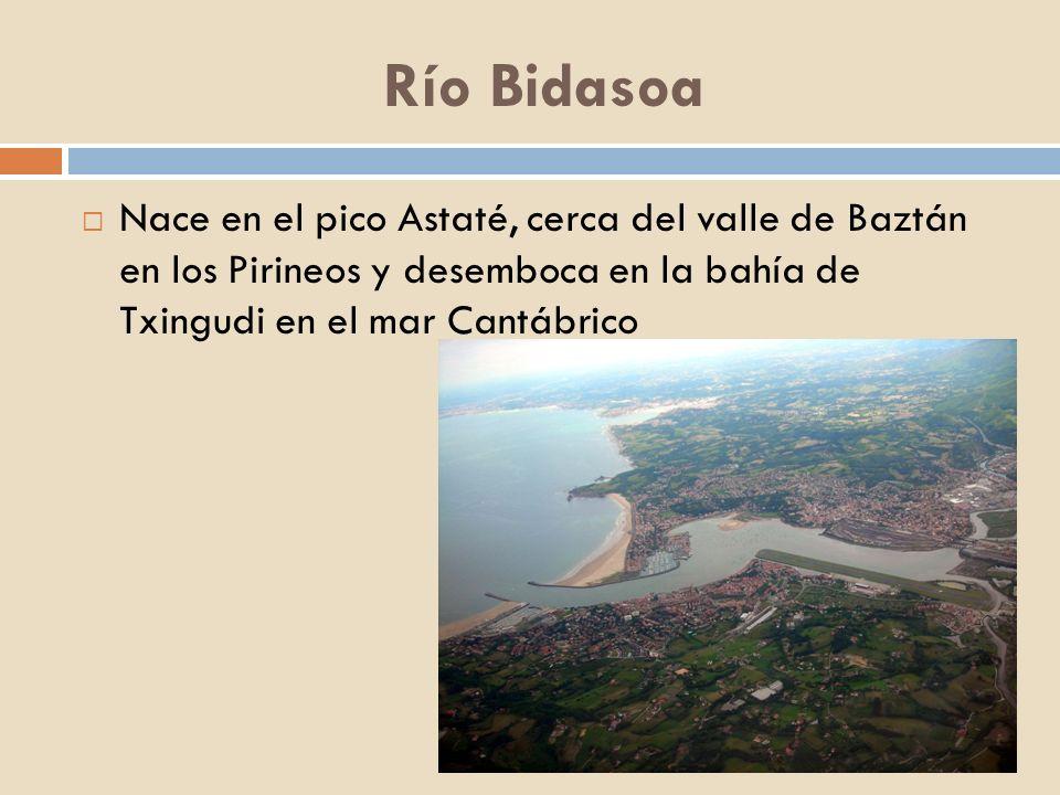 Río BidasoaNace en el pico Astaté, cerca del valle de Baztán en los Pirineos y desemboca en la bahía de Txingudi en el mar Cantábrico.
