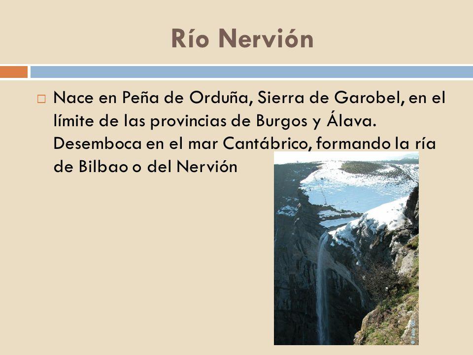 Río Nervión