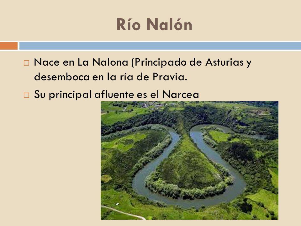 Río NalónNace en La Nalona (Principado de Asturias y desemboca en la ría de Pravia.
