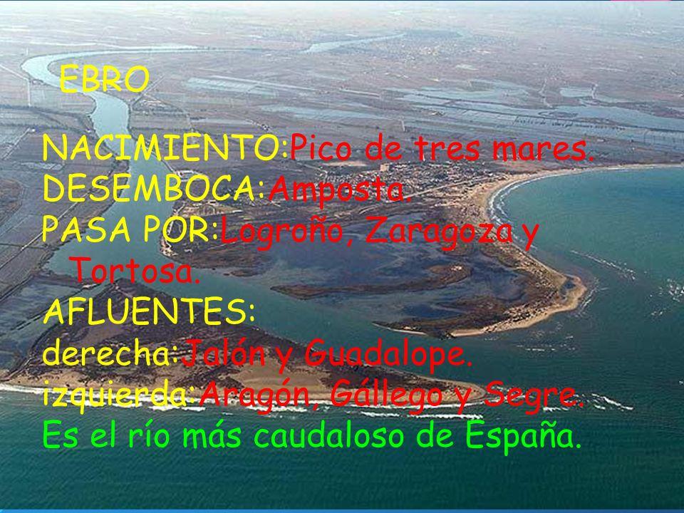 EBRO NACIMIENTO:Pico de tres mares. DESEMBOCA:Amposta. PASA POR:Logroño, Zaragoza y Tortosa. AFLUENTES: