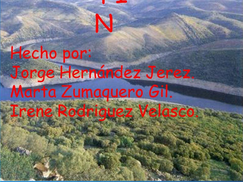 FIN Hecho por: Jorge Hernández Jerez. Marta Zumaquero Gil.