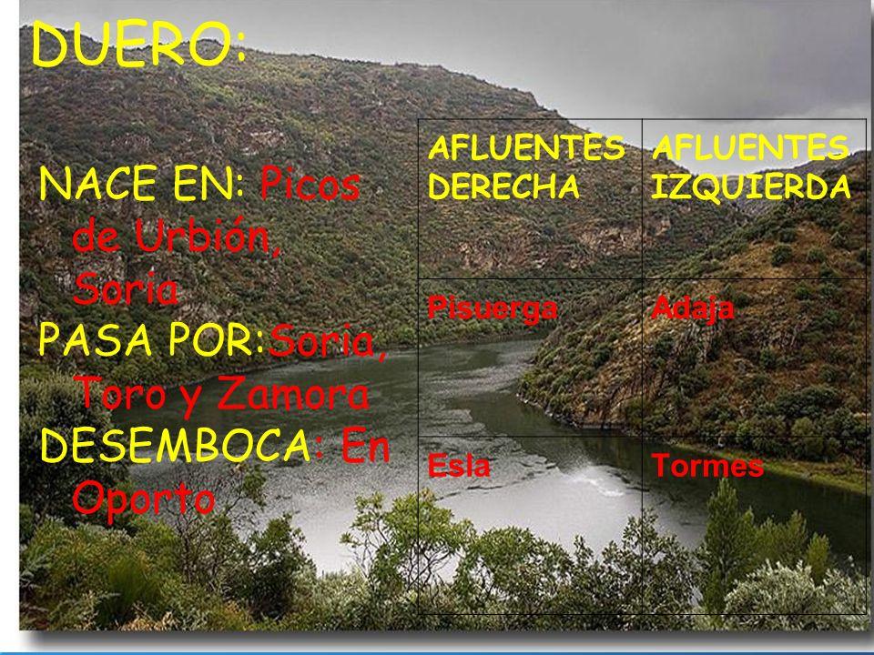 DUERO: NACE EN: Picos de Urbión, Soria PASA POR:Soria, Toro y Zamora