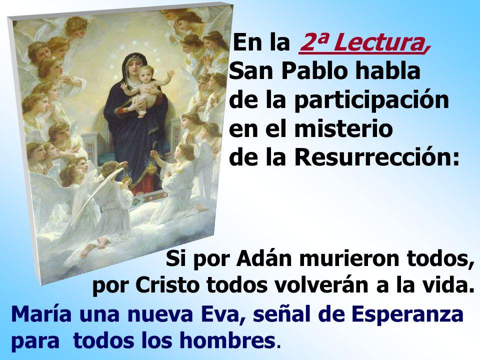 San Pablo habla de la participación en el misterio de la Resurrección: