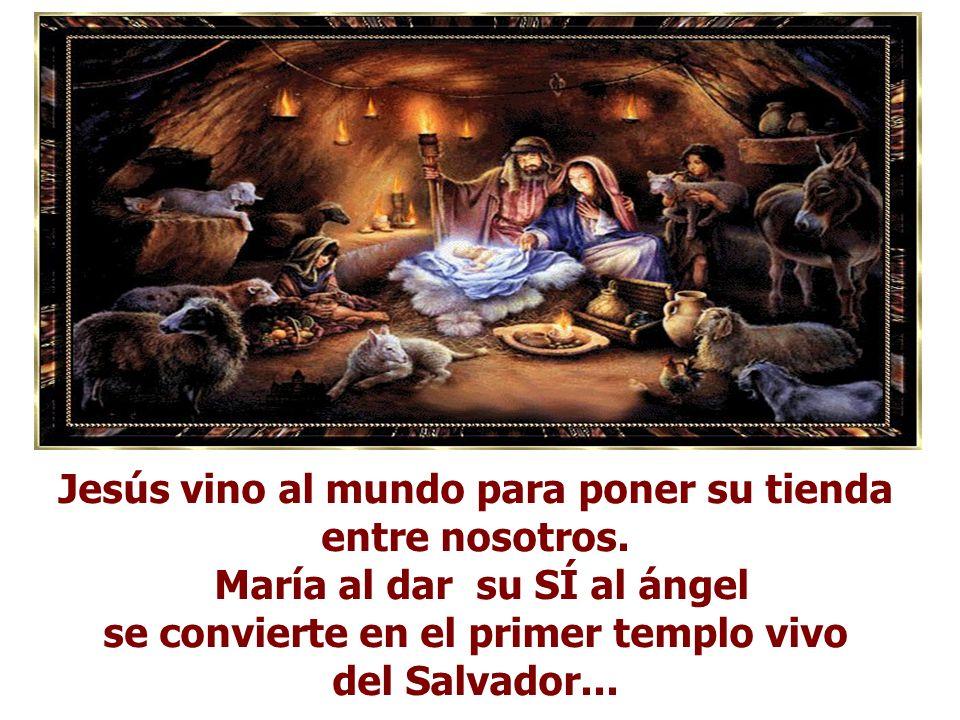 Jesús vino al mundo para poner su tienda entre nosotros.