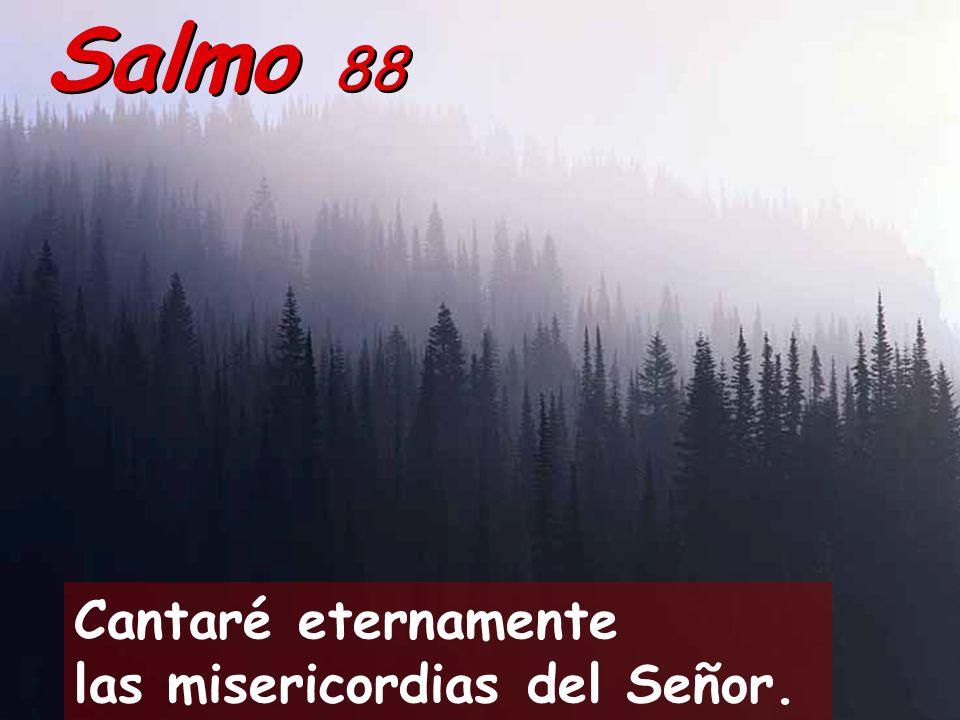 Salmo 88 Cantaré eternamente las misericordias del Señor.