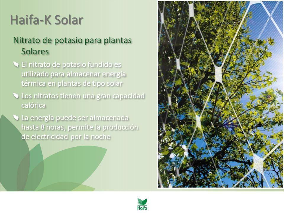 Haifa-K Solar Nitrato de potasio para plantas Solares