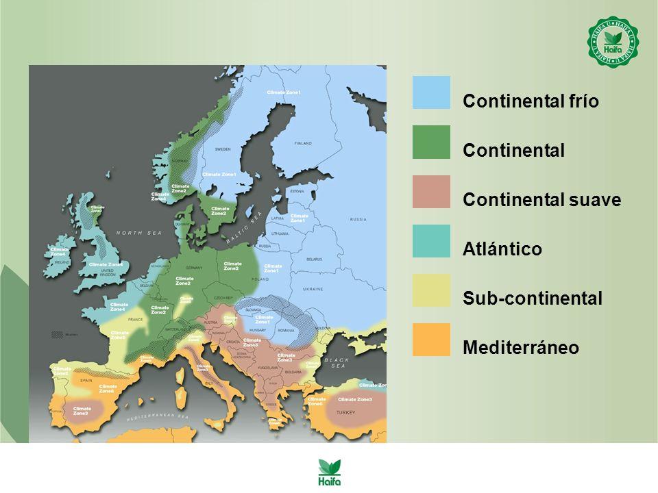 Continental frío Continental Continental suave Atlántico Sub-continental Mediterráneo