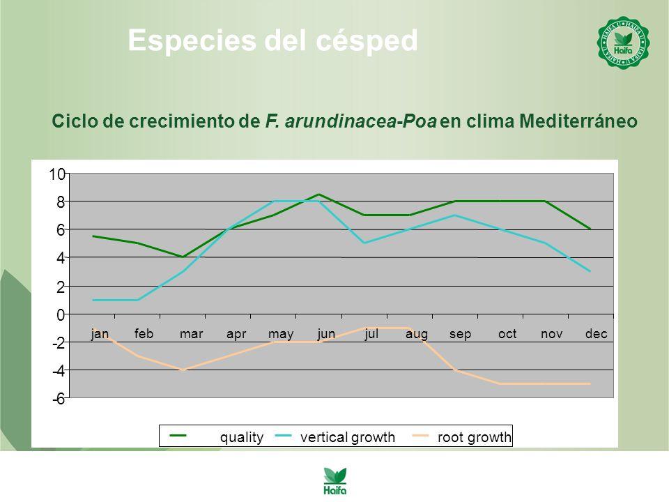 Especies del césped Ciclo de crecimiento de F. arundinacea-Poa en clima Mediterráneo. 10. 8. 6. 4.