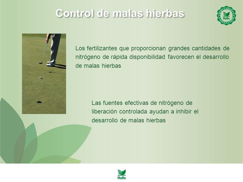 Control de malas hierbas