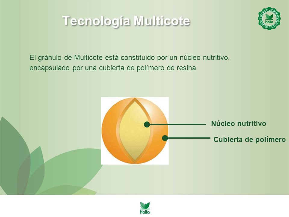 Tecnología Multicote El gránulo de Multicote está constituido por un núcleo nutritivo, encapsulado por una cubierta de polímero de resina.