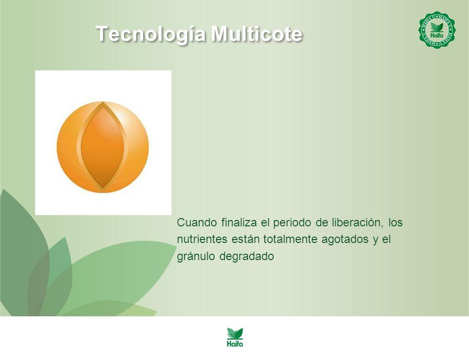 Tecnología Multicote Cuando finaliza el periodo de liberación, los nutrientes están totalmente agotados y el gránulo degradado.