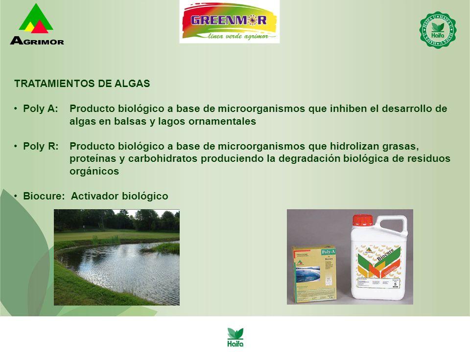 TRATAMIENTOS DE ALGAS Poly A: Producto biológico a base de microorganismos que inhiben el desarrollo de.