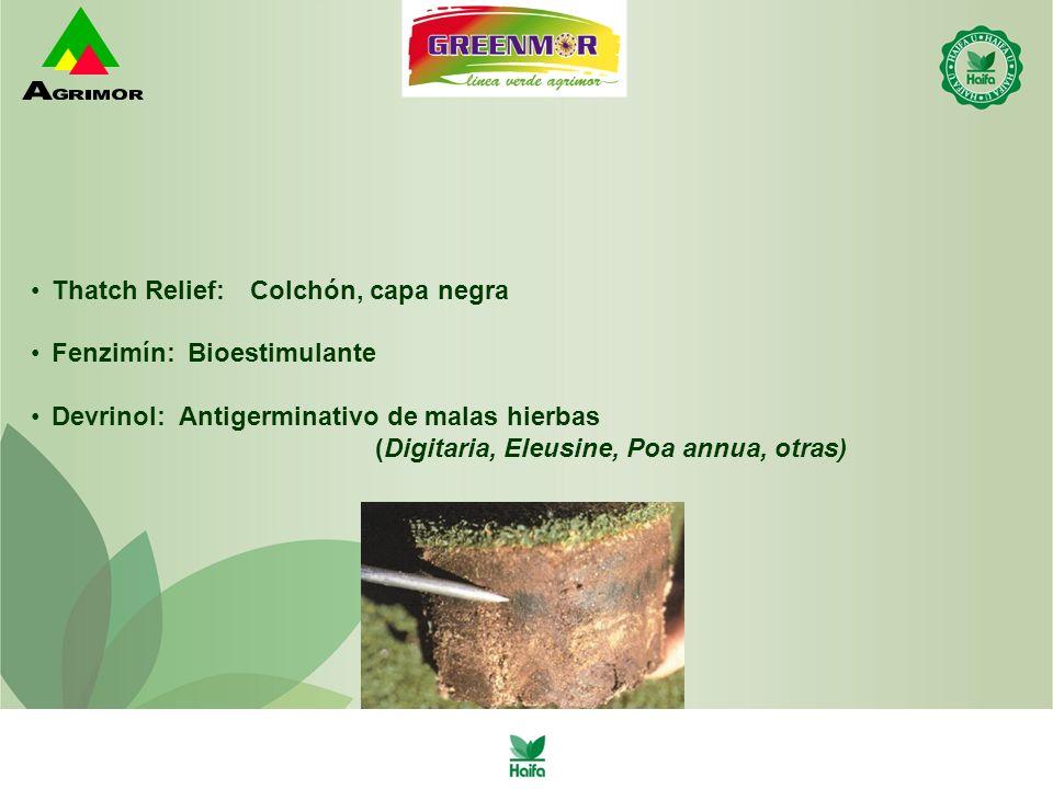 Thatch Relief: Colchón, capa negra