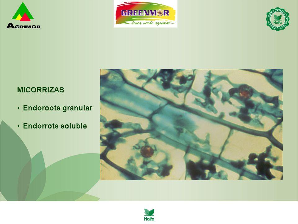 MICORRIZAS Endoroots granular Endorrots soluble