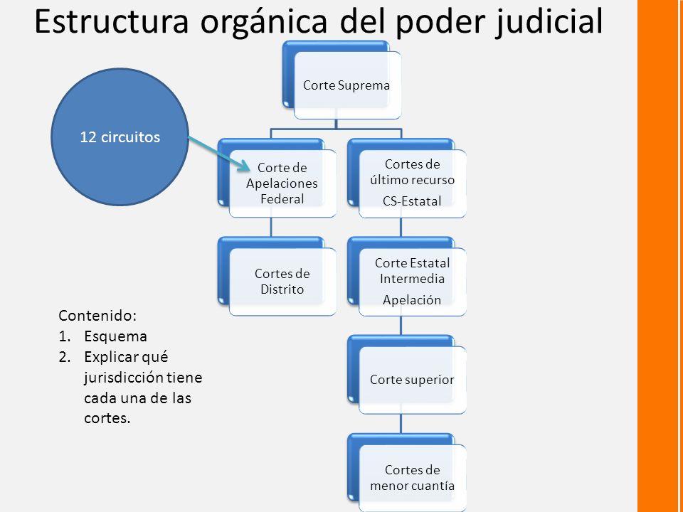 Estructura orgánica del poder judicial