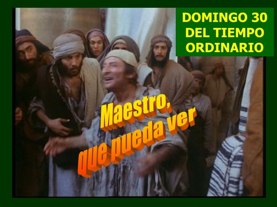 DOMINGO 30 DEL TIEMPO ORDINARIO