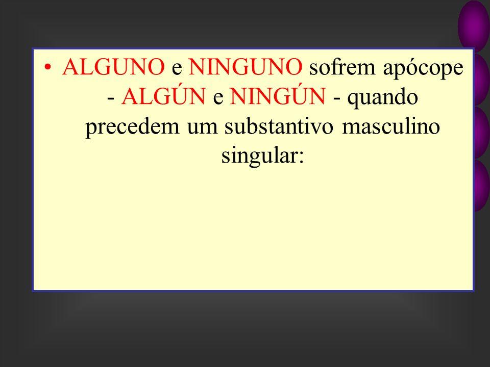 ALGUNO e NINGUNO sofrem apócope - ALGÚN e NINGÚN - quando precedem um substantivo masculino singular: