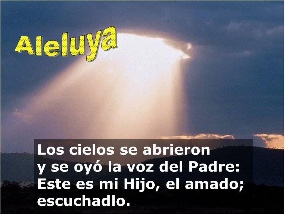 Aleluya Los cielos se abrieron y se oyó la voz del Padre: Este es mi Hijo, el amado; escuchadlo.