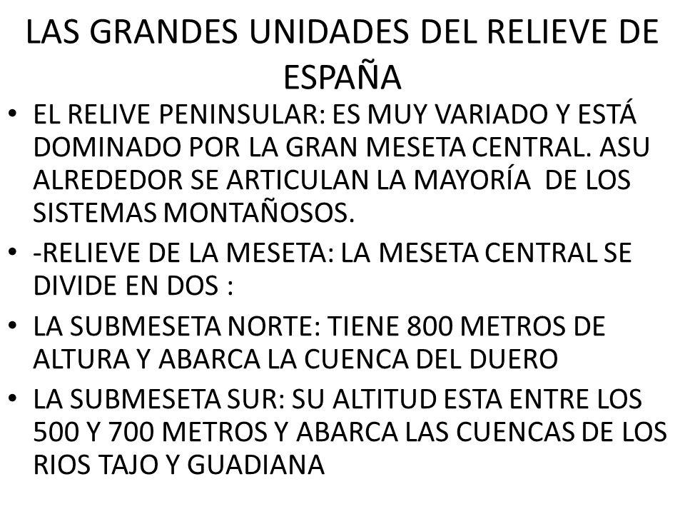 LAS GRANDES UNIDADES DEL RELIEVE DE ESPAÑA