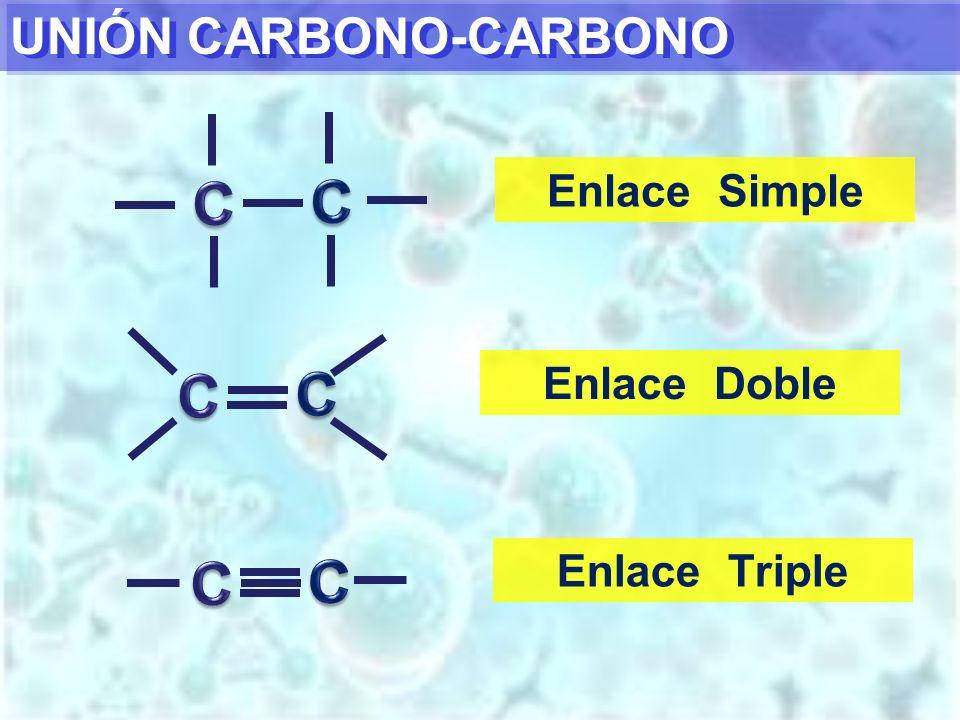C C C C C C UNIÓN CARBONO-CARBONO Enlace Simple Enlace Doble