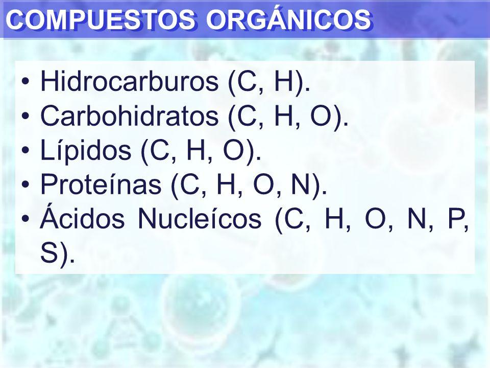 Ácidos Nucleícos (C, H, O, N, P, S).