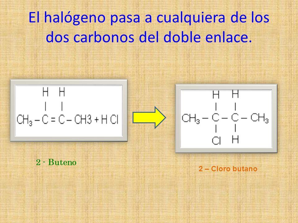 El halógeno pasa a cualquiera de los dos carbonos del doble enlace.