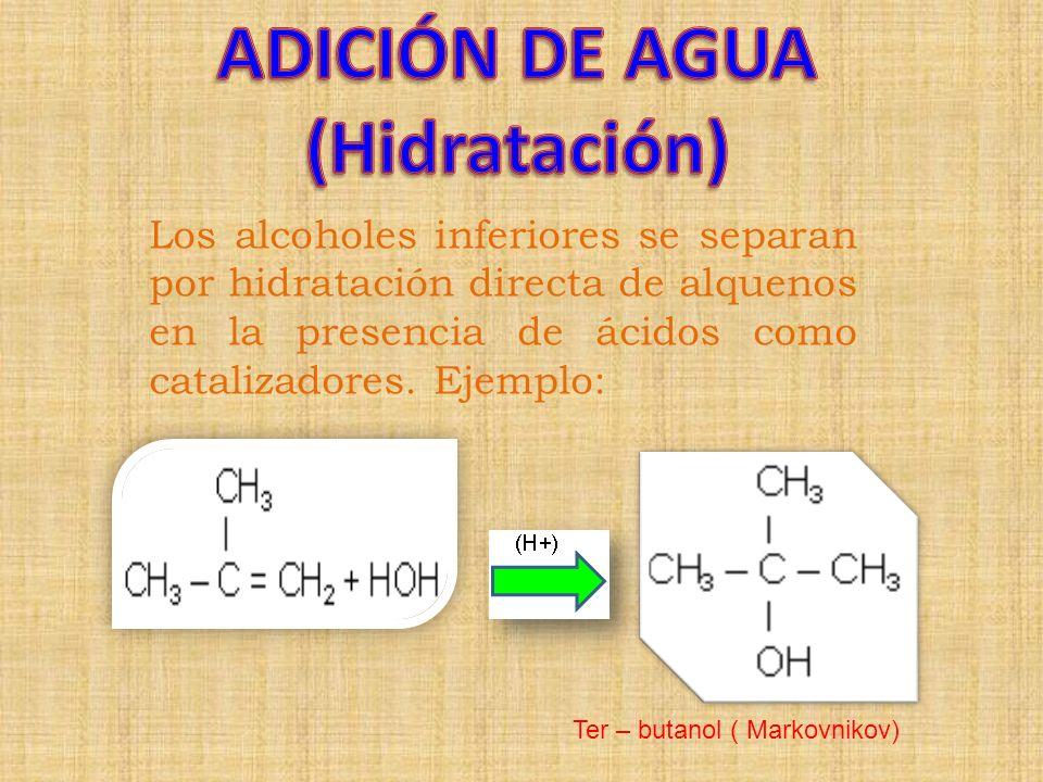 ADICIÓN DE AGUA (Hidratación)