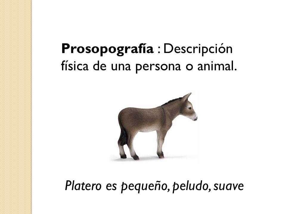 Prosopografía : Descripción física de una persona o animal.