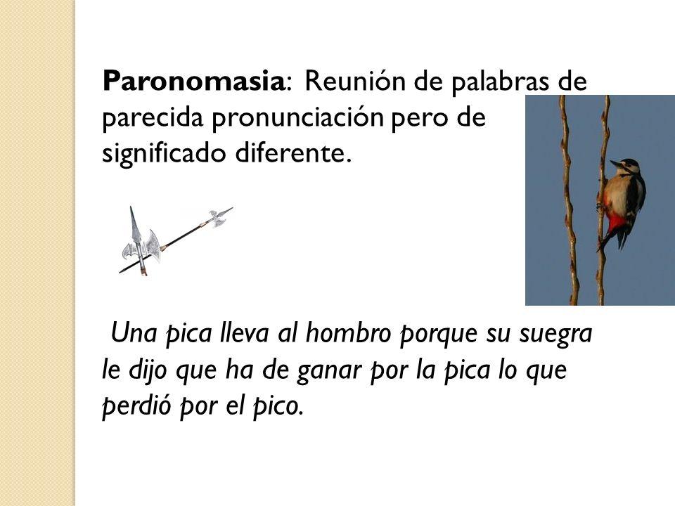 Paronomasia: Reunión de palabras de parecida pronunciación pero de significado diferente.