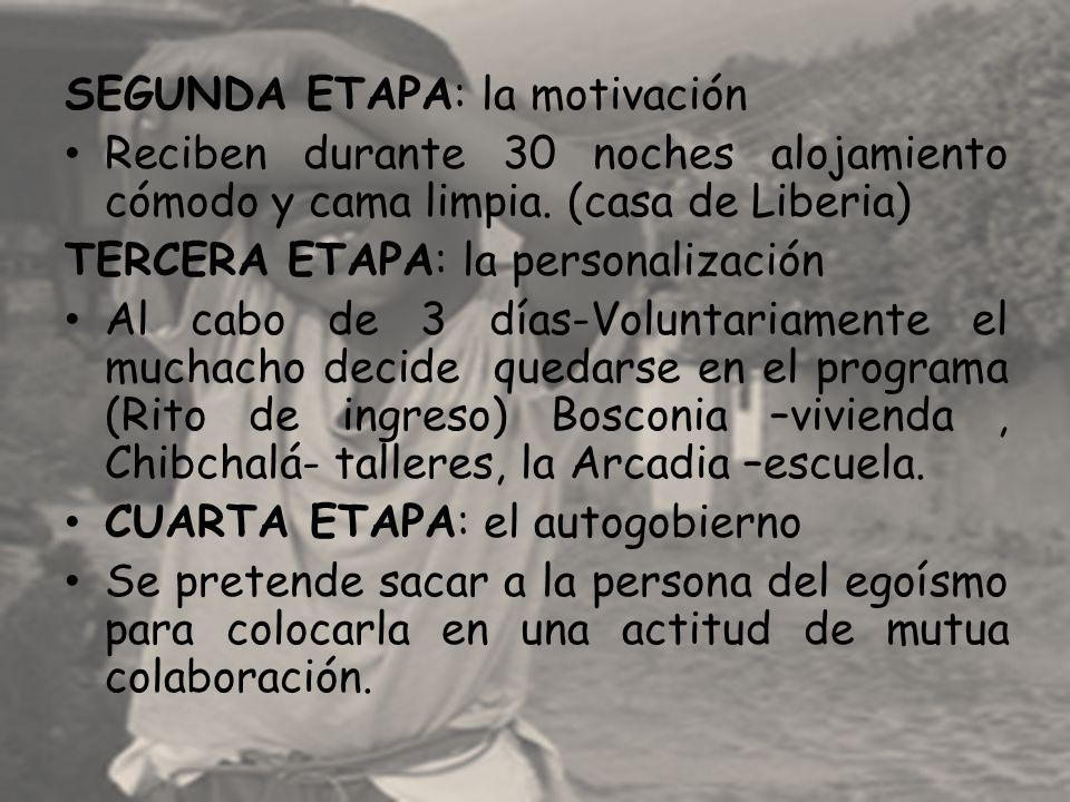 SEGUNDA ETAPA: la motivación