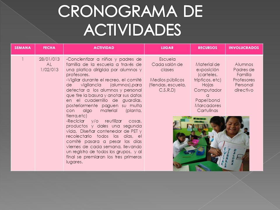 CRONOGRAMA DE ACTIVIDADES 1 28/01/013 AL 1/02/013