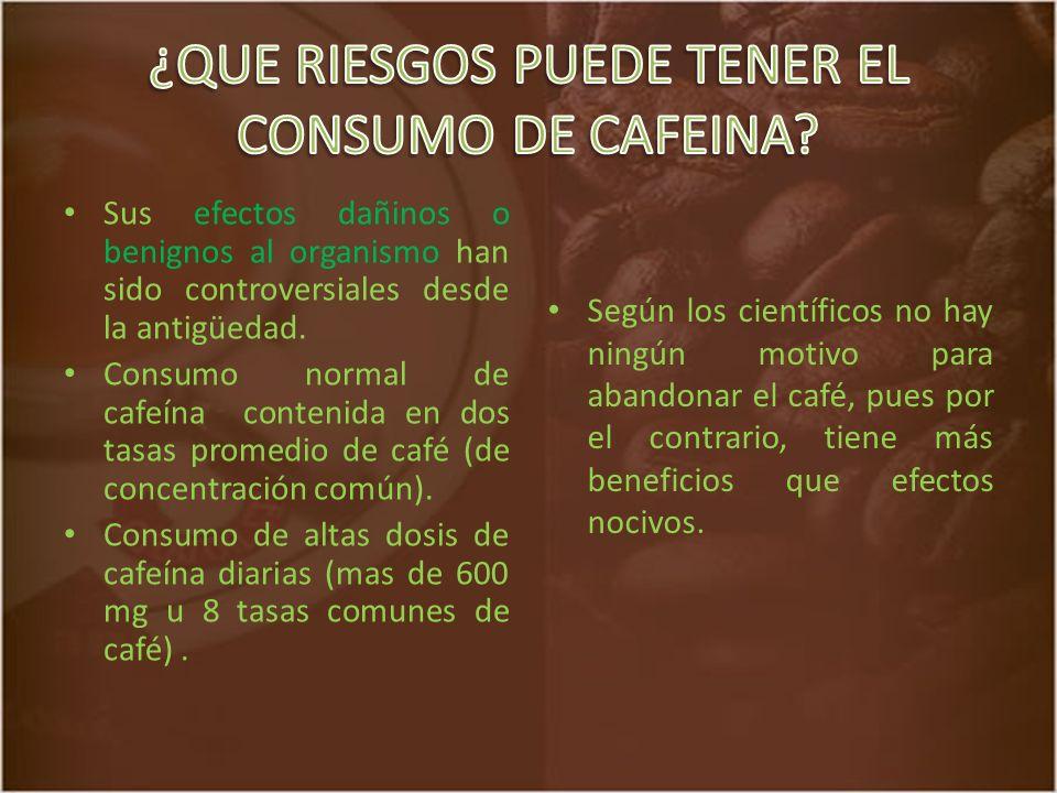 ¿QUE RIESGOS PUEDE TENER EL CONSUMO DE CAFEINA