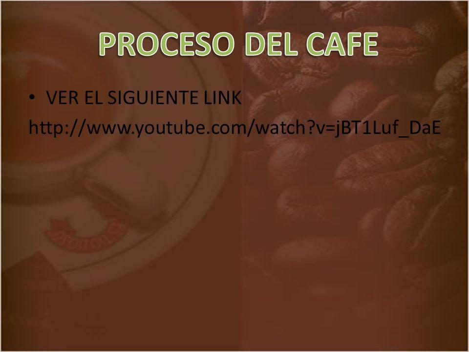 PROCESO DEL CAFE VER EL SIGUIENTE LINK