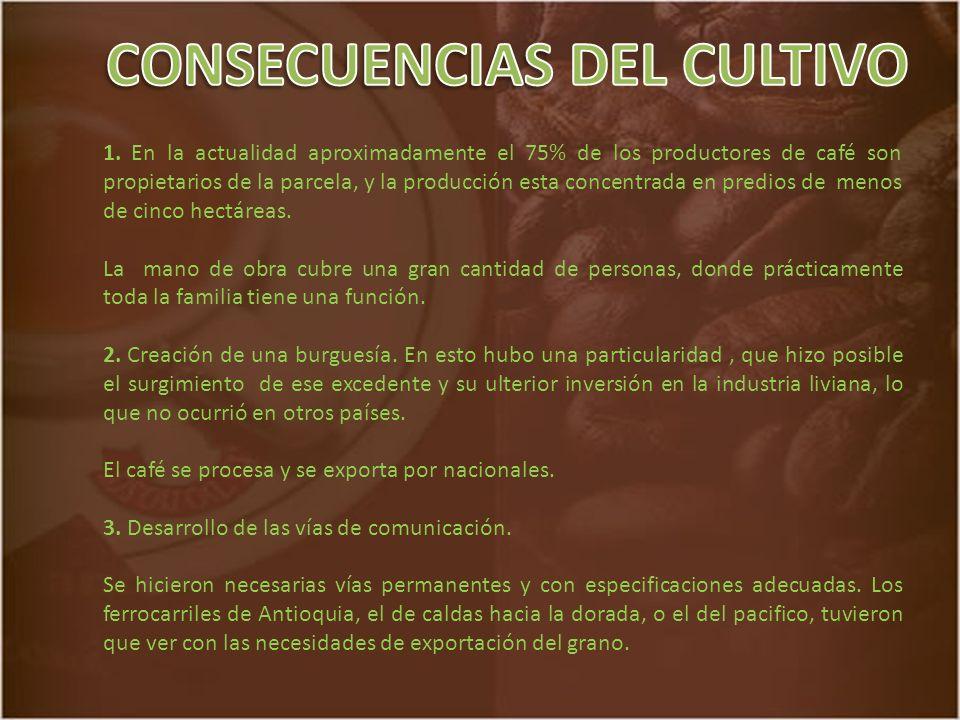 CONSECUENCIAS DEL CULTIVO