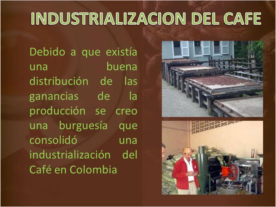 INDUSTRIALIZACION DEL CAFE